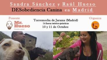 Seminario La Villa encantada: 10 y 11 de octubre de 2020